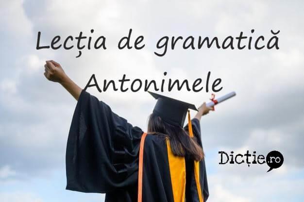 Lecția de gramatică: antonimele