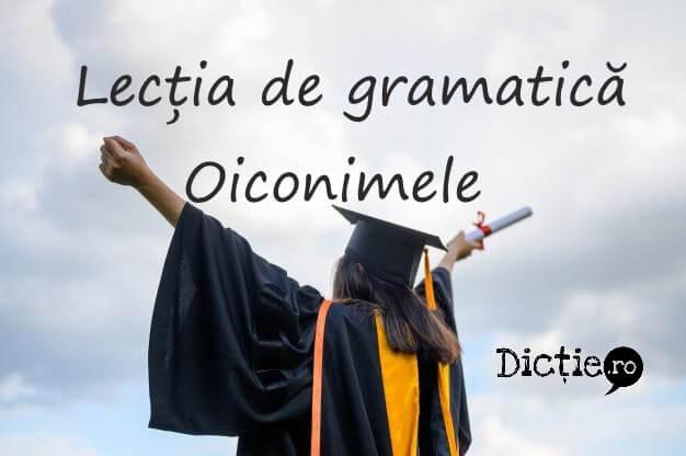 Lecția de gramatică: oiconimele