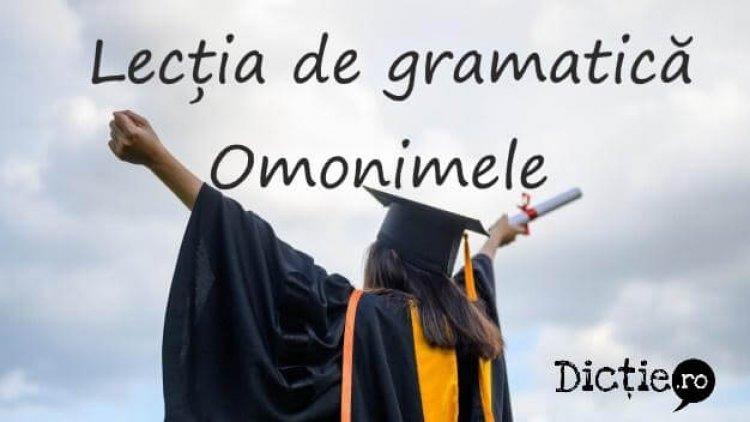 Lecția de gramatică: omonimele
