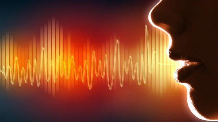 Sunetul și mecanismul vorbirii